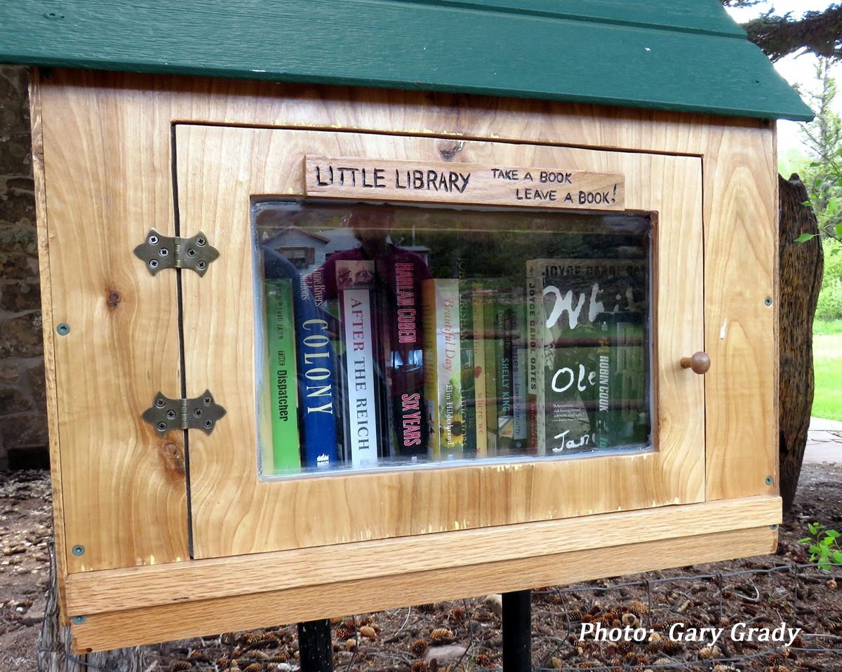 Little Library GG credit