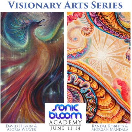 SB Visionary Arts series