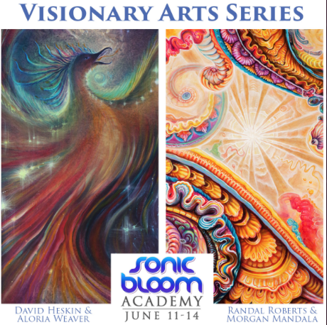 SB Visionary Arts series